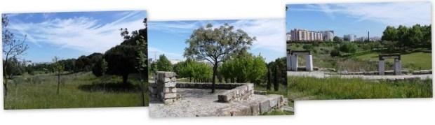 parque da paz1